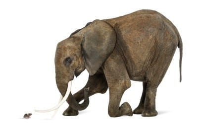 PAGA Cases Stalled by Arbitration:  Of Mice & Elephants