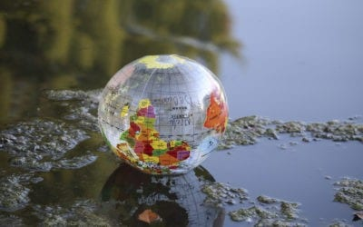 Class Action Arbitration – The Upside Down World of Who Decides?